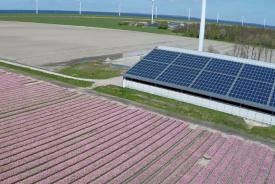 Laatste kans op subsidie voor zonnepanelen