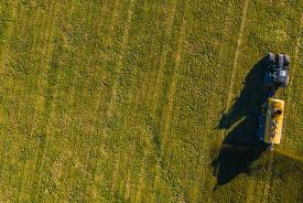 Heeft oogstjaar 2019 al het wenselijke in zich?