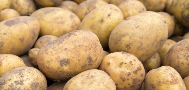 Bovenkant voorlopig gezien op aardappelmarkt