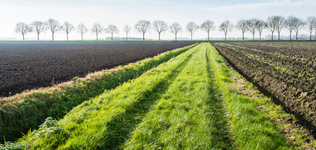 Landbouwgrond is geen stikstofgevoelige natuur