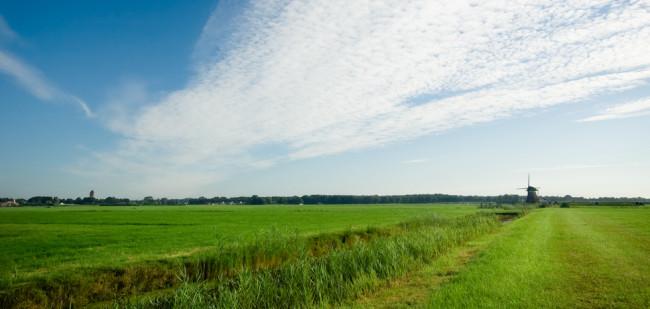 Gelderland gaat 1.000 hectare verpachten
