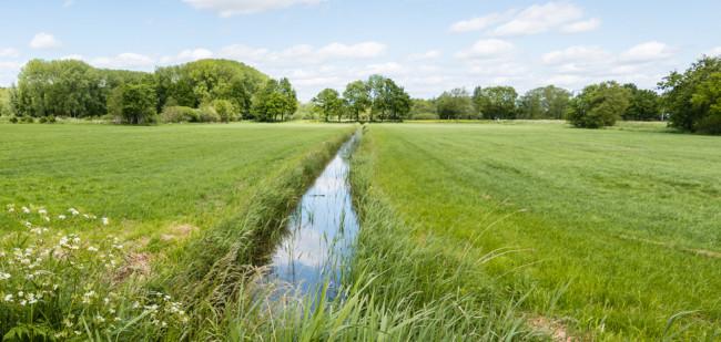 Grote boeren bepalen de grondmarkt
