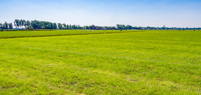 Friesland biedt 450 hectare pachtgrond aan