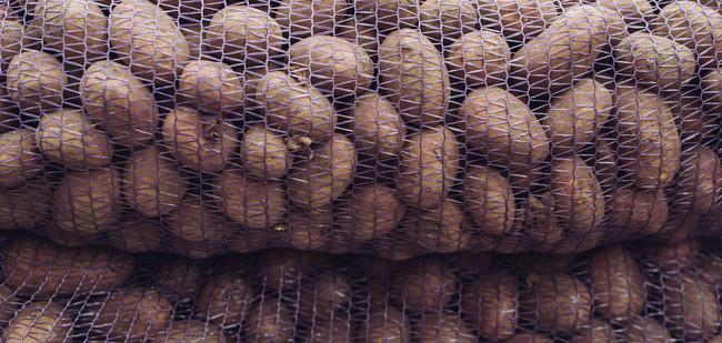 Egypte zet in op meer aardappelexport