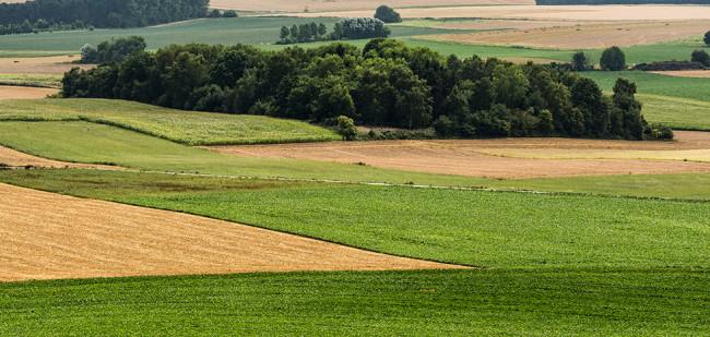 Vlaanderen: stijgende grondprijs en vergrijzing