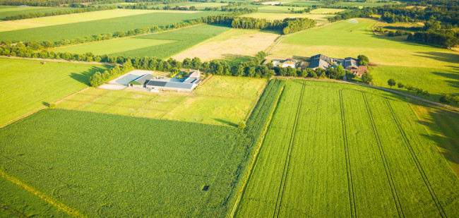 Glyfosaatverbod op Brabantse pachtgrond