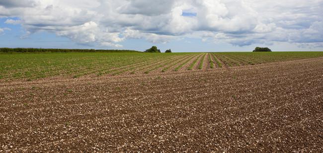 Brits grondaanbod laagste sinds crisisjaar 2001