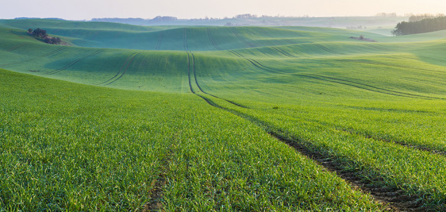 Duitse landbouwgrond kost 10.000 euro tot een ton
