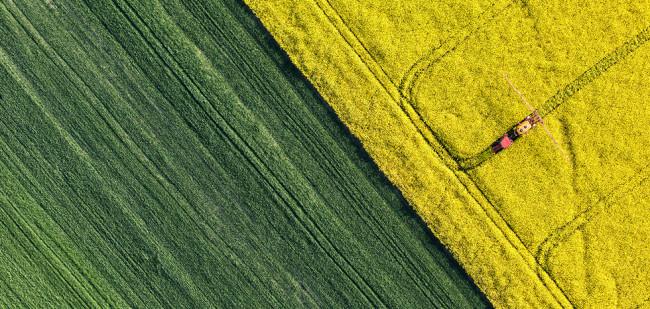 Subsidiemaffia in Oost-Europa gedijt op GLB-geld
