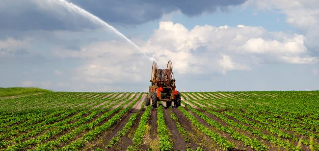 Meer akkerbouwers zoeken grond buiten Nederland