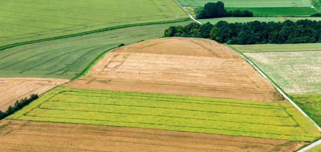 4 redenen waarom grond in 2021 duurder kan worden