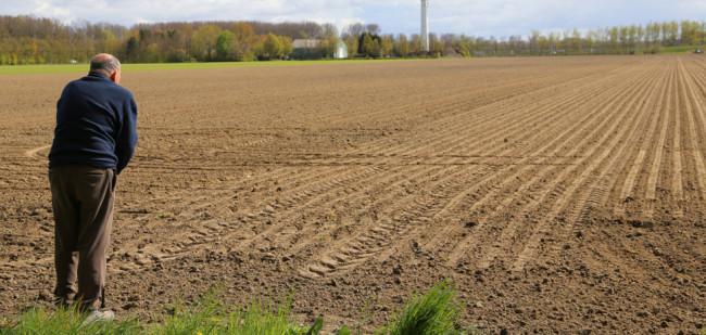 Nederland in top 5 meest duurzame voedselsystemen