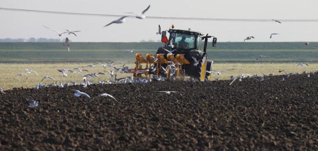Krijgt landbouwgrond meer functies?