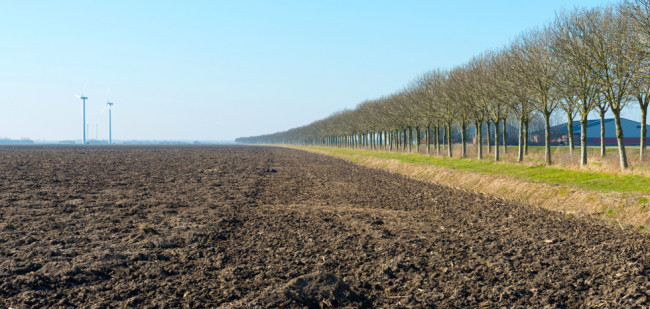 RVB biedt 845 hectare pachtgrond aan