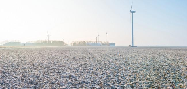 Rijksvastgoedbedrijf kan 'stikstofcrisis' snel oplossen