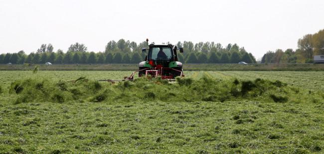 Pachtprijs melkveeregio's stijgt, prijs akkerland daalt