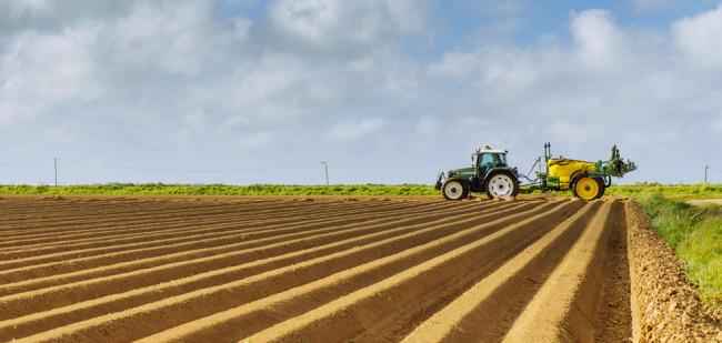 Aardappelvoorraad niet grootste zorg Franse teler