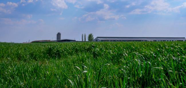 Prijzen landbouwgrond in Amerika schieten omhoog