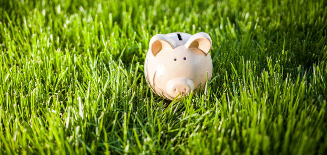 Verkoop varkensbedrijven leeft op door varkensprijs