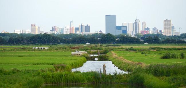 'Commissaris nodig voor inrichten landelijk gebied'