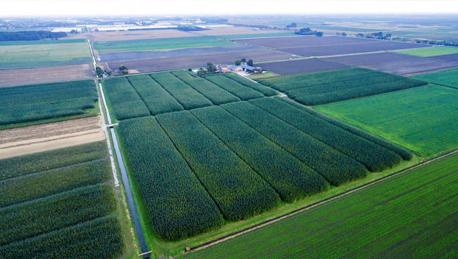Video: taxeren agrarische grond in het buitengebied