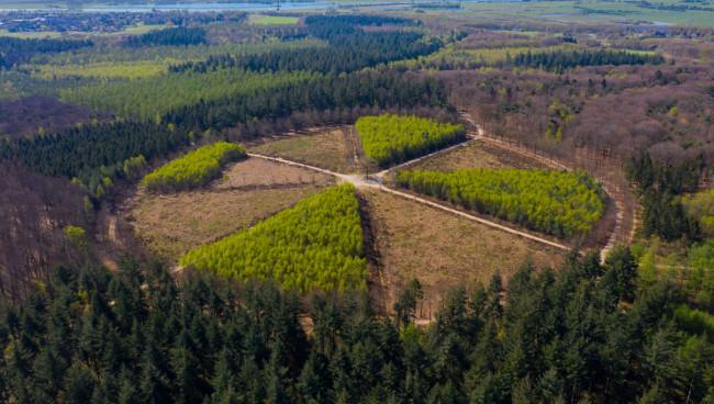 Natuurgebieden met strikje erom naar de beurs