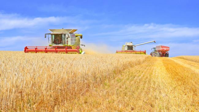 Krijgt landbouw Oekraïne een boost met hervorming?